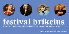 Festival Brikcius 2020 - https://www.Brikcius.com/Festival