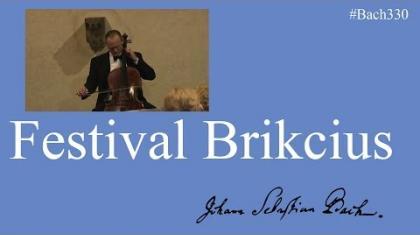 Festival Brikcius 2015